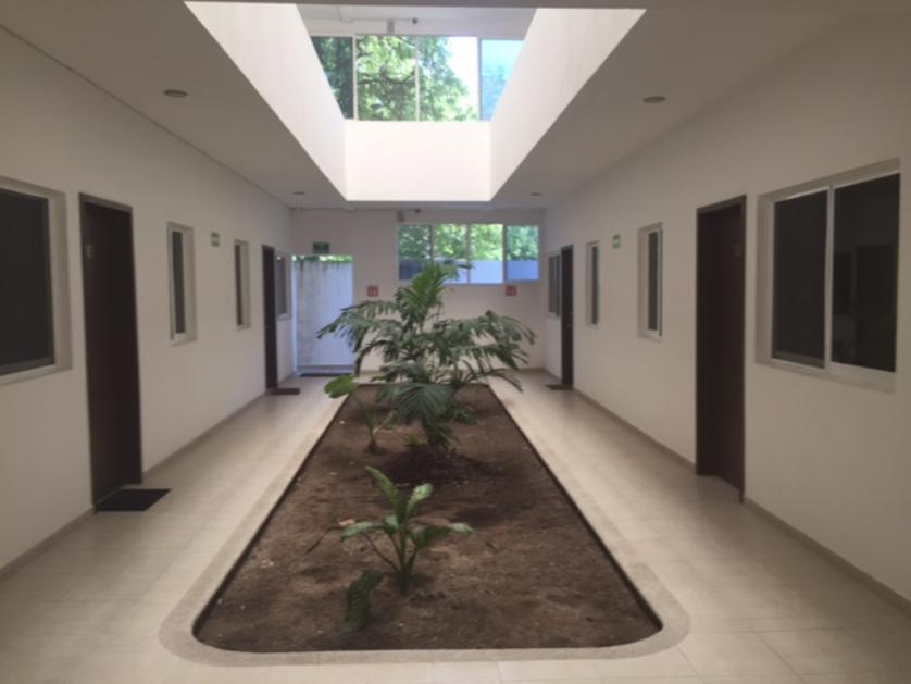Departamento en Renta Miami, Ciudad Del Carmen