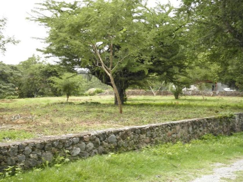 Lote de Terreno en Venta Fraccionamiento Apatlaco S/n, Apatlaco, Jiutepec