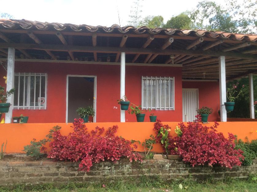 Finca en Venta Centro, Pereira