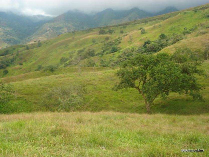 Finca en Venta Toro, Valle Del Cauca