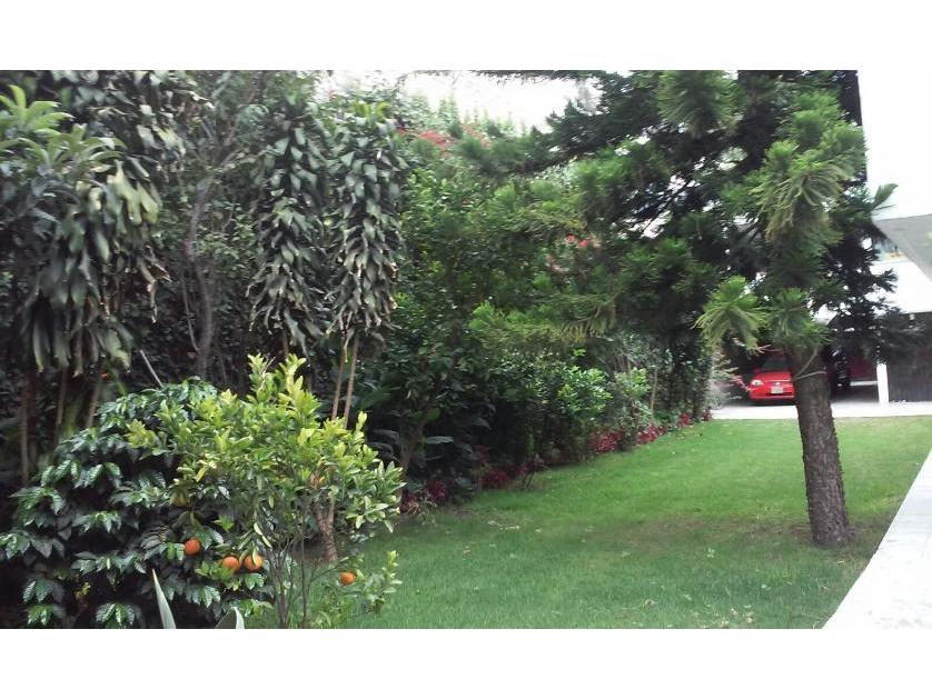 Departamento en Venta Miguel A De Quevedo, Colonia Del Carmen, Coyoacán