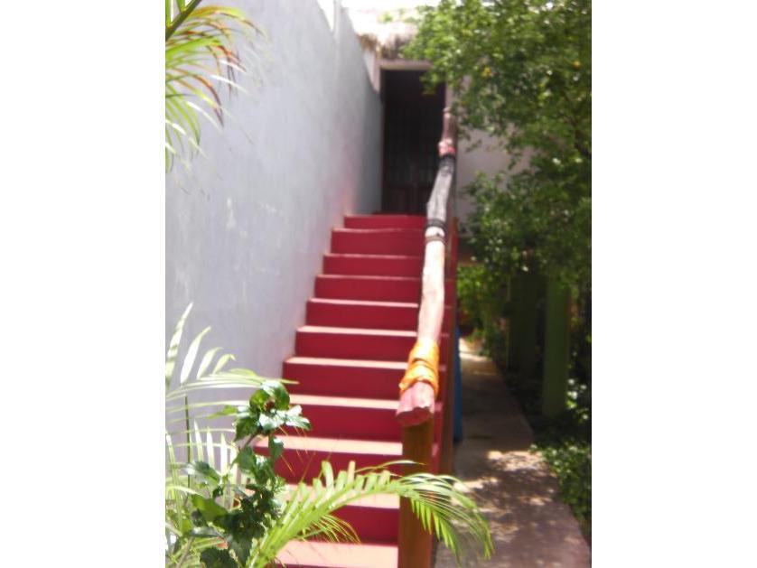 Departamento en Renta Calle 66 #383/a Entre 43 Y 45 Colonia Centro, Centro Histórico, Mérida