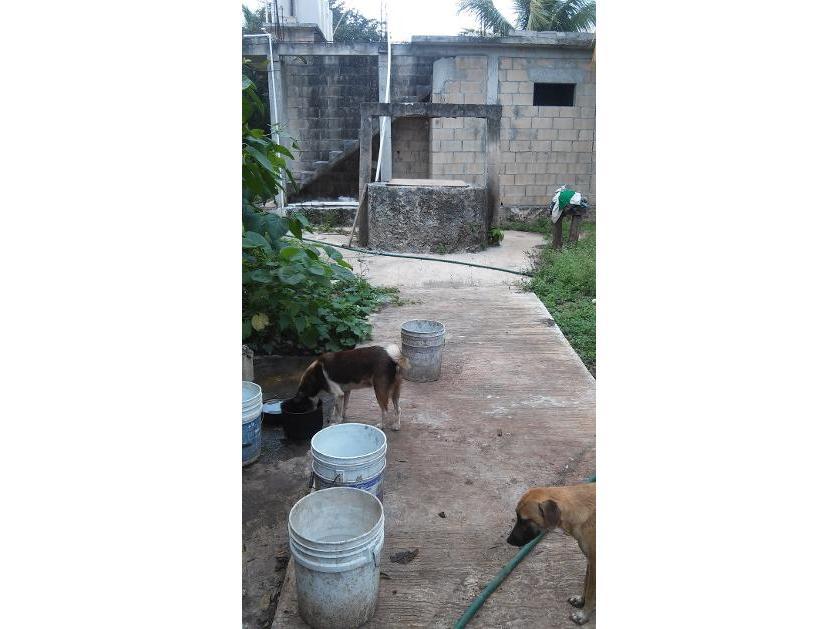 Rancho en Venta C4 Escuela De Policia, Chetumal, Quintana Roo