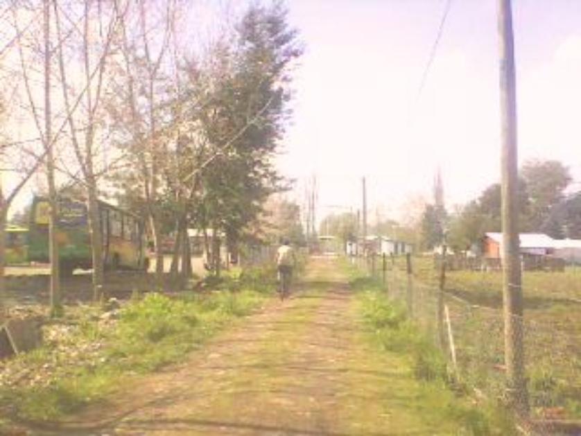 Terreno 1000 m2 en Avenida las Mariposas en calle interior