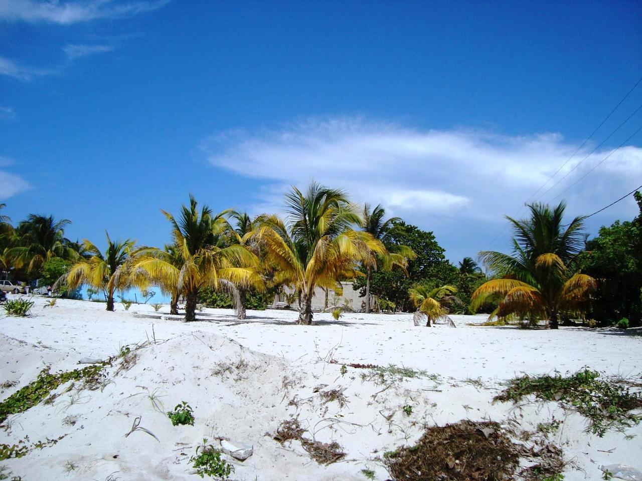 Lote de Terreno en Venta Santa Clara, Yucatán, Dzidzantún, Yucatán