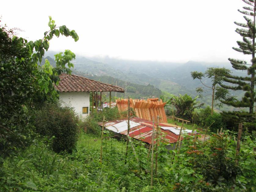 Finca en Venta San Vicente,pereira, Pereira, Risaralda