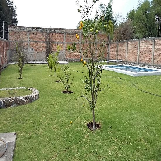Venta quinta en jardines de la calera tlajomulco de for Jardines de casas quintas