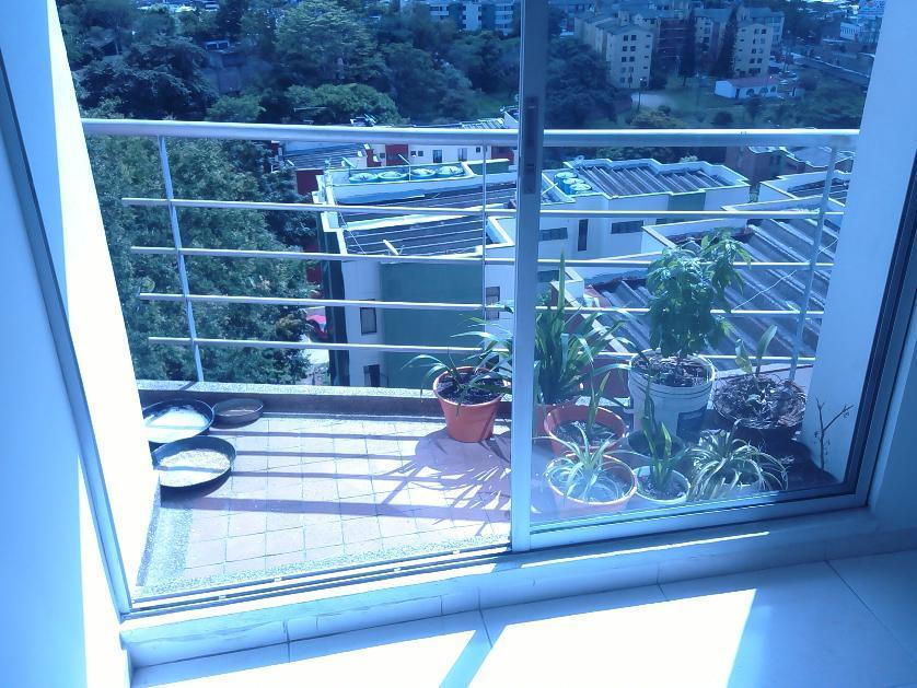 Residencial en Arriendo Cll 36 Num 7-64 T 4 Apto 603, Urbanización Caracolí, Ibague