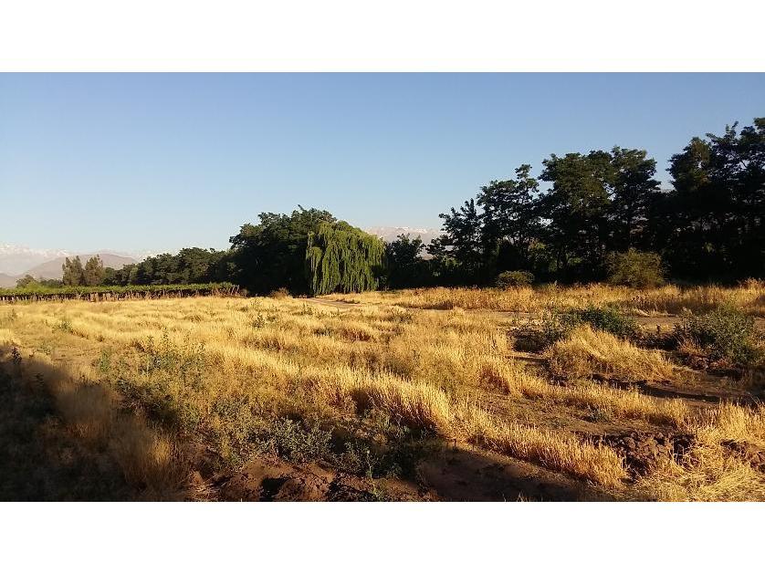 Vende Terreno Urbano Rinconada de Los Andes