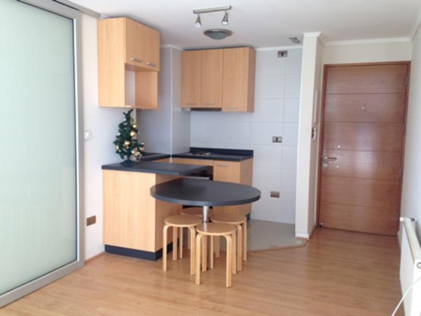 Vendo lindo departamento 1 dormitorio, con estacionamiento Parque Urbano Concepcion